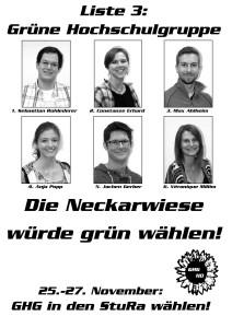 StuRa Plakat Neckarwiese-001